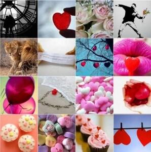 love533_small