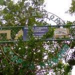 """Заставка для - Подари детство: Парк """"Старая Кубань"""". Этап 1"""
